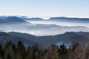Endlich wieder Schwarzwaldurlaub