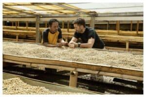 we Prommer mit Kaffee-Bauer auf Bali