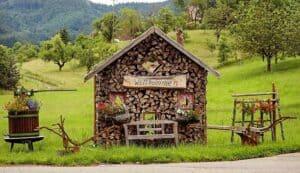 Hotel Tannhof: Frühlings-Flittertage für Verliebte im Schwarzwald